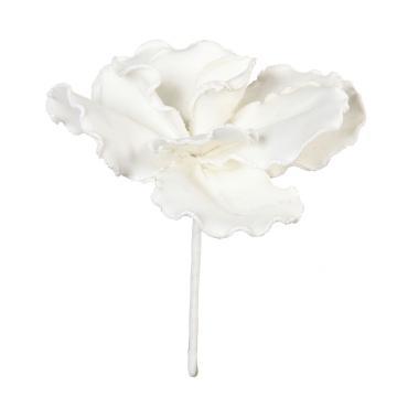 Fleur Blanche Rapa PM
